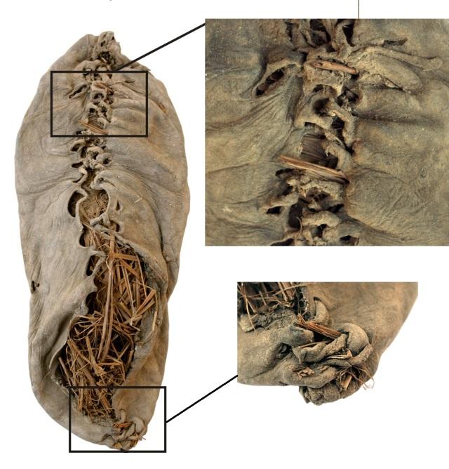 5,500 year old shoe found in Areni,Armenia. Photo: Pinhasi R, Gasparian B, Areshian G, Zardaryan D, Smith A, et al. via Wikimedia