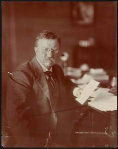 Theodore Roosevelt (1910) via Library of Congress